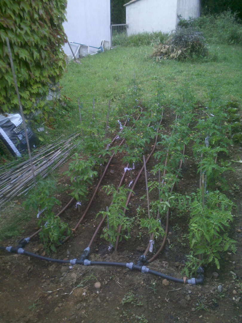 Systeme Arrosage Automatique Potager fred irrigation arrosage - arroser le potager